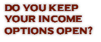 network marketing income options